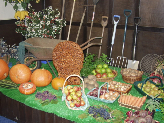 Harvest produce and tools